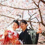 桜の下での画像25