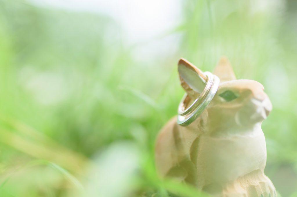 フォトウエディングの準備から当日までの流れ【フォト婚コラム】のメイン画像